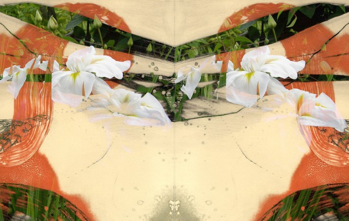 """A Feeler"" by Michiko Suzuki"